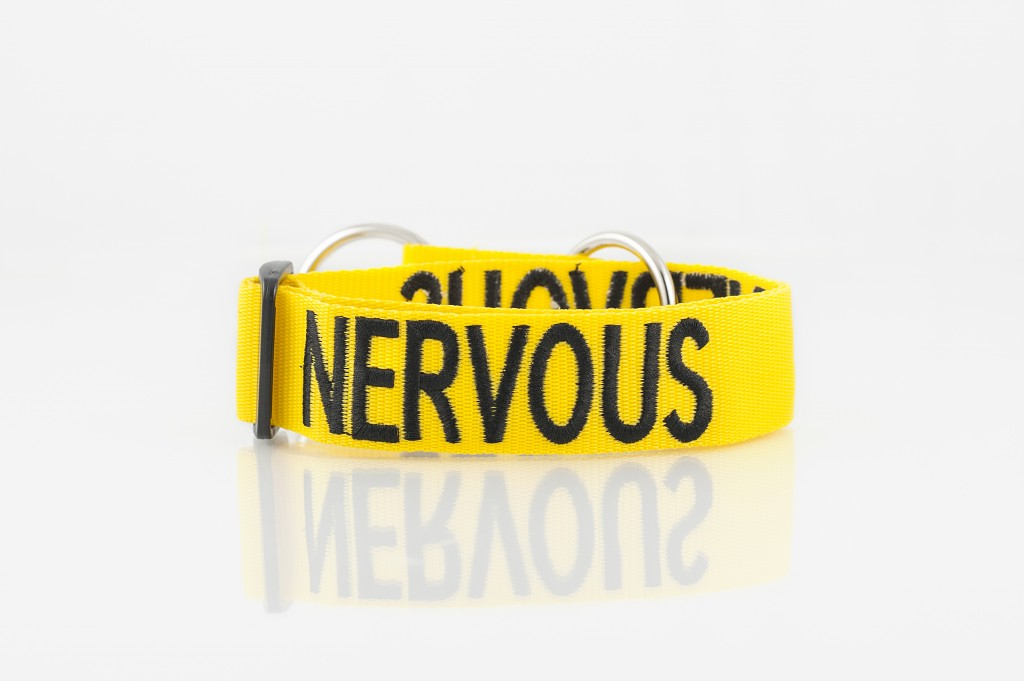 NERVOUS DOG, Dog collar Semi Choke and Buckle Collars Yellow Colour Code