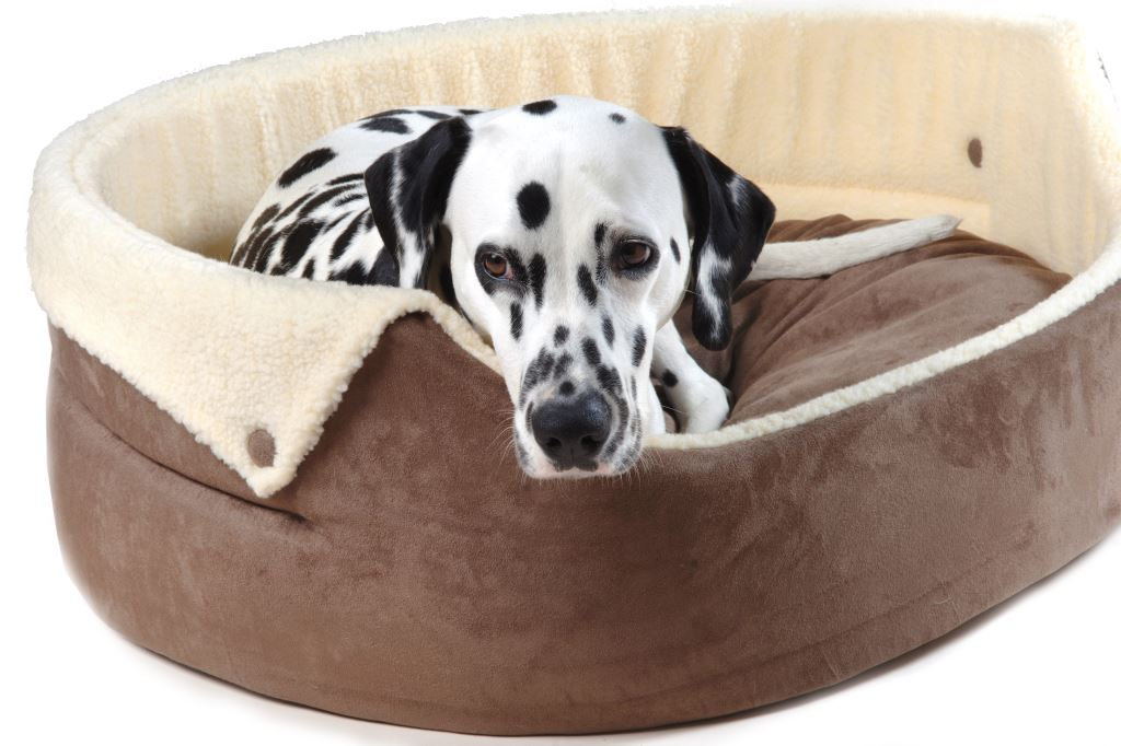 Chelsea Button-Down Dog Bed