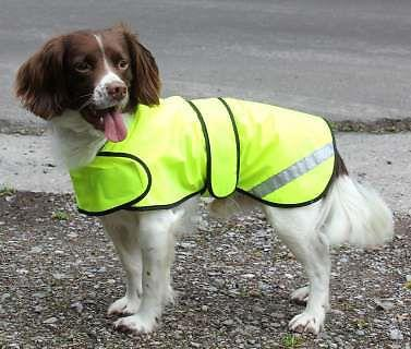Hi-visibility waterproof Dog Safety Coat  waterproof fabric