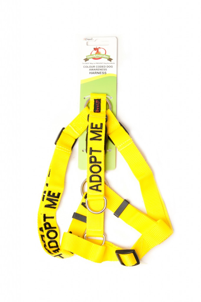 ADOPT ME DOG,  Dog Strap Harness Yellow Colour Coded