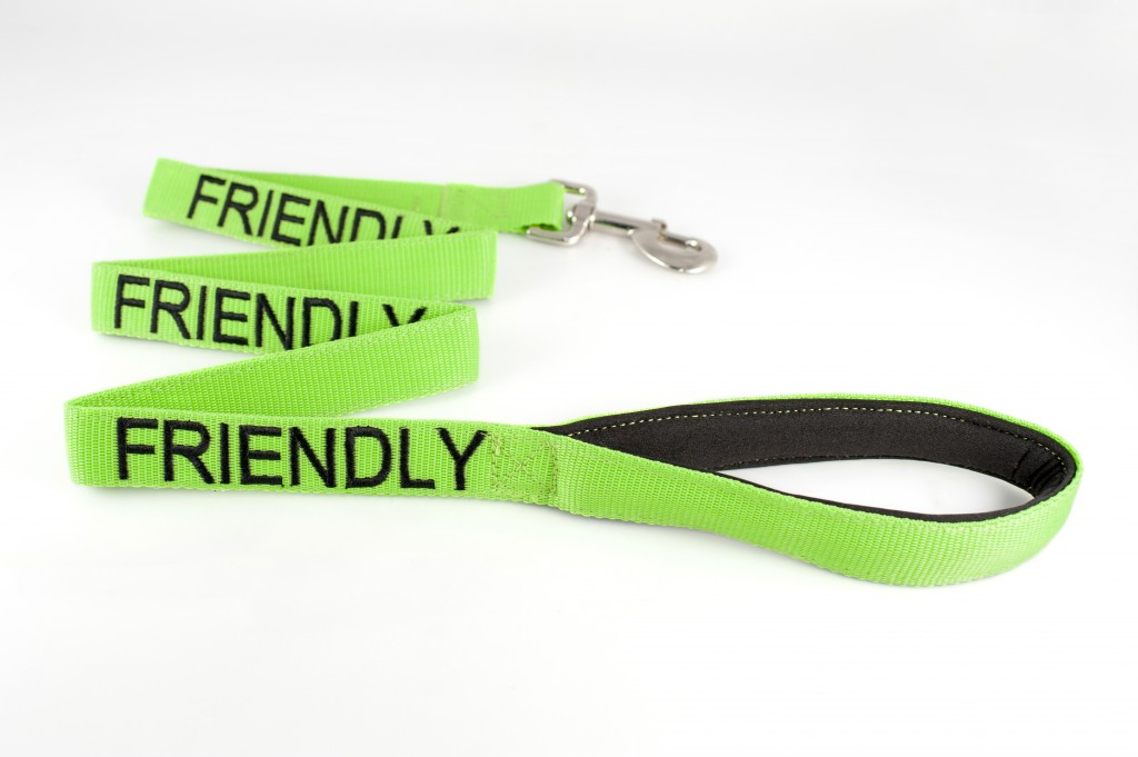 FRIENDLY DOG,  Dog Lead Leash with padded Handle  Green Colour Coded