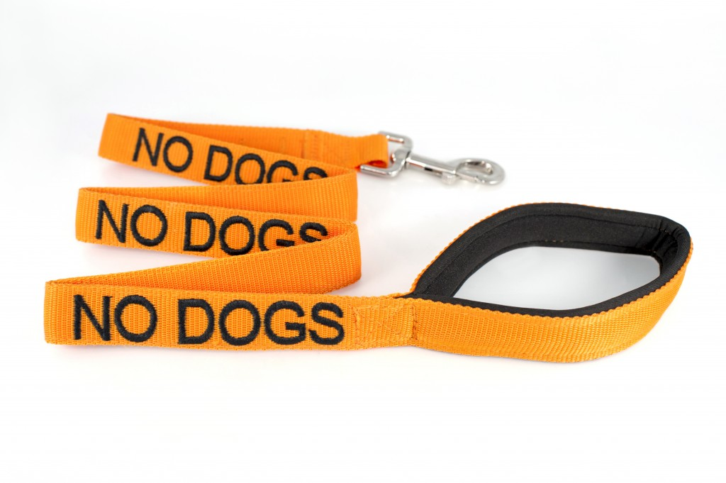 NO DOG,  Dog Lead Leash with padded Handle  Orange Colour Coded
