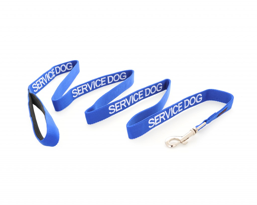 SERVICE DOG,  Dog Lead Leash with padded Handle  Blue Colour Coded