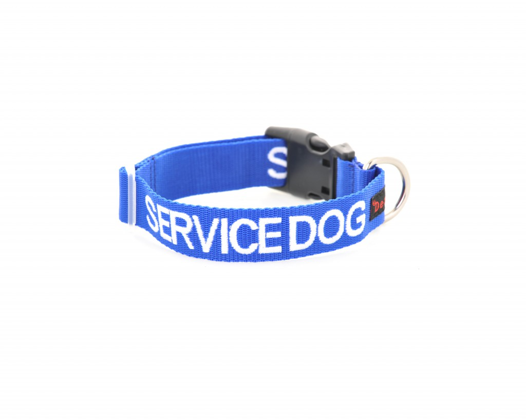 SERVICE DOG, Dog collar Semi Choke and Buckle Collars Blue Colour Code