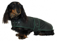 Water and Windproof Dachshund Hunter Coat tailored with Corduroy Collar